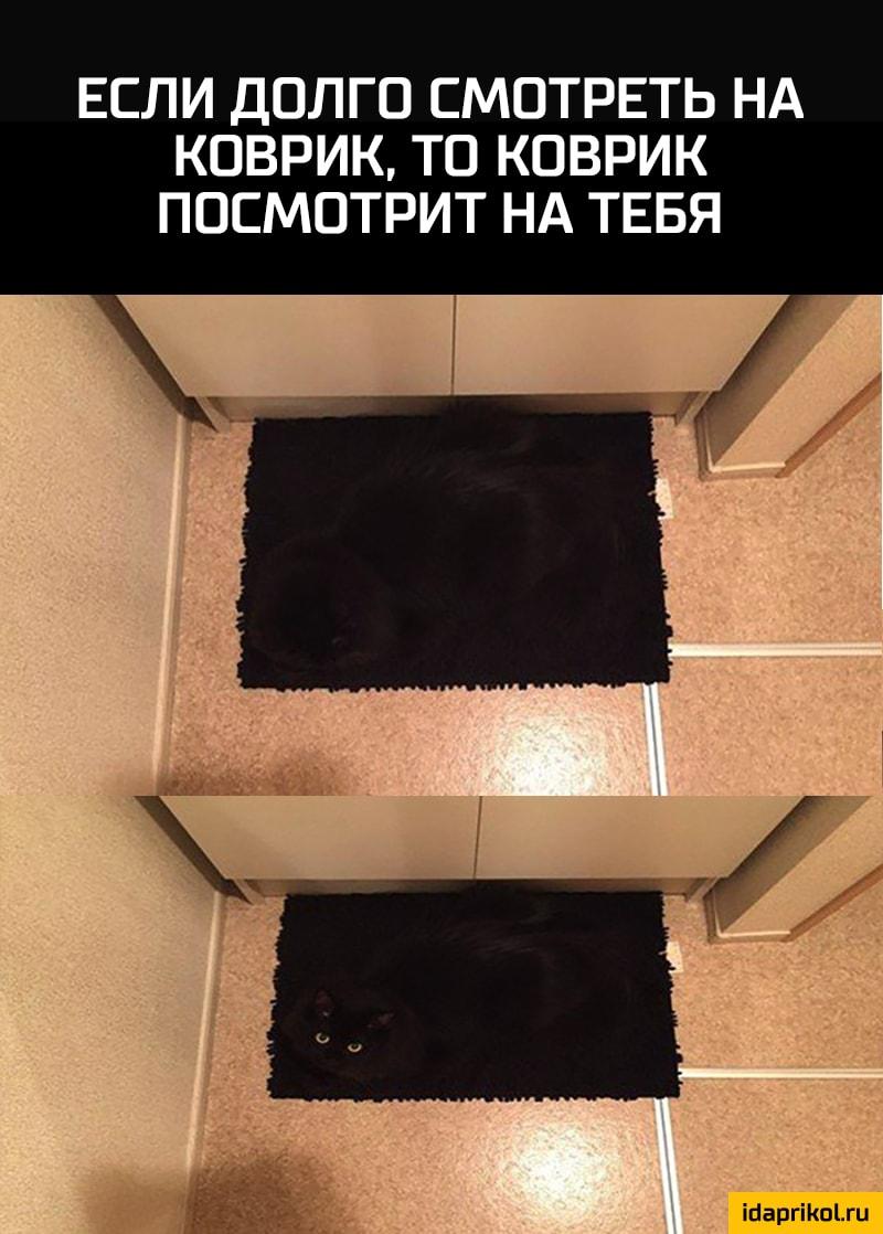 http://cdn.idaprikol.ru/images/d644bdf59f5f1ab0dc3b69f07c697916ba269427b220a367764bd89746142c98_1.jpg