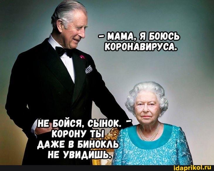 https://cdn.idaprikol.ru/images/d0b8d587a3daeb6e7d3202bdd5857bb4fcab9776457c4887dd10c1104b5d0343_1.jpg